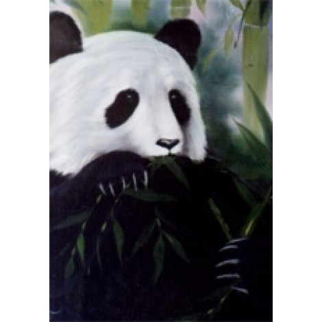 Wildlife project - Panda