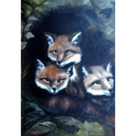 Wildlife project - Baby foxes