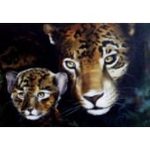 Wildlife project - Mother and baby jag